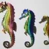 O_seahorses3_SM